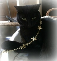 KANA IN THE NYE NECKLACE