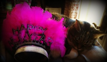 TIGER FEELING PUNKY WITH A COLD AND TIARA ON HER BUTT